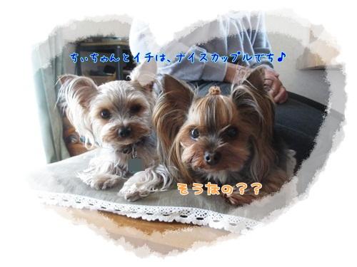 ちぃ&イチ