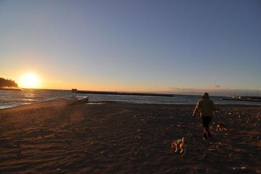 018日没海岸散歩