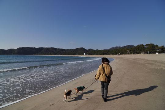 302砂浜散歩