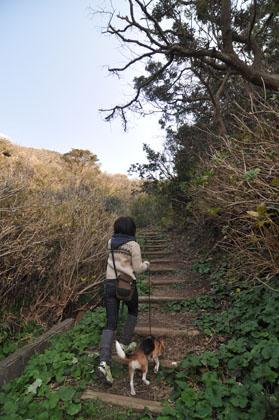 318タライ岬登り