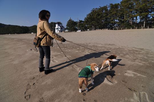 302砂浜散歩2