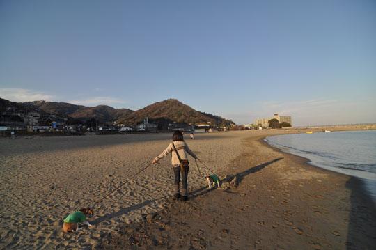 417多賀の海岸散歩