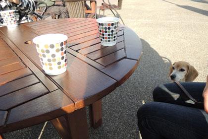 415コーヒー