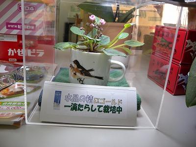s-022.jpg