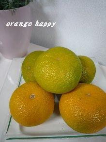 20120130sweetorange.jpg