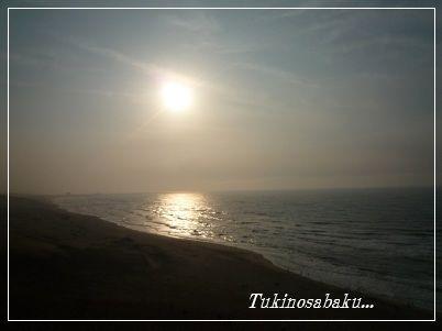 20120505sakyu2.jpg
