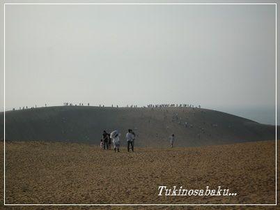 20120505sakyu7.jpg