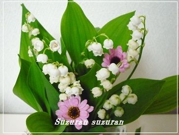 20120513suzuran1.jpg