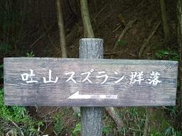 20120513suzuran4.jpg