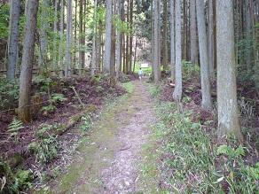 20120513suzuran5.jpg