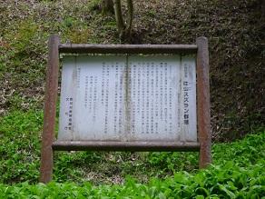 20120513suzuran6.jpg