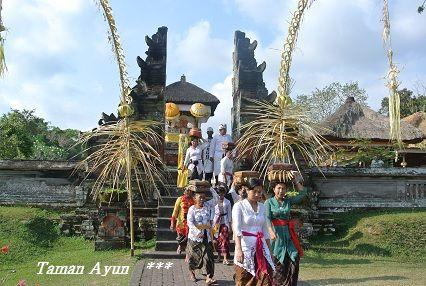 201209tamanayun2.jpg