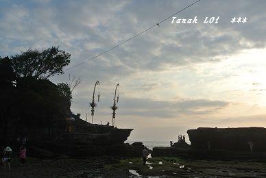 201209tanaroto6.jpg