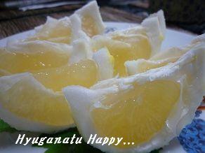 20121215hyuganatu1.jpg