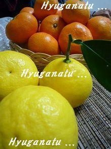 20121215hyuganatu2.jpg