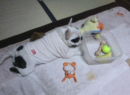 ななのおもちゃ箱 7