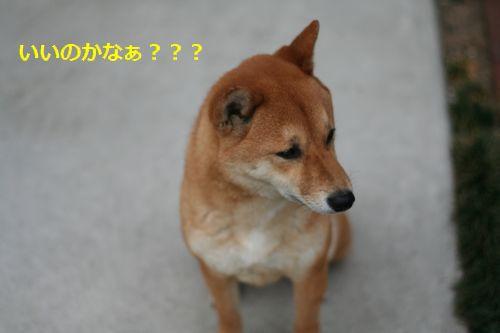 026_20120527221534.jpg