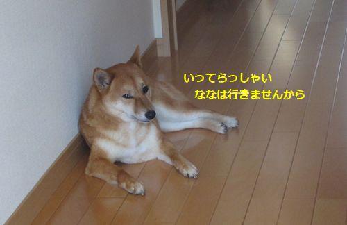 041_20120608173947.jpg