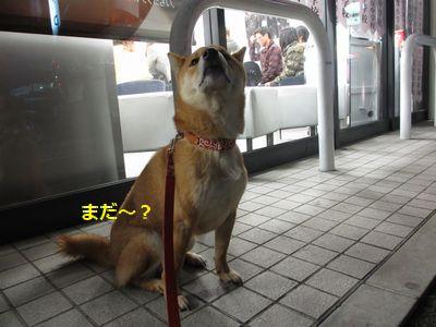 nana夏秋 022