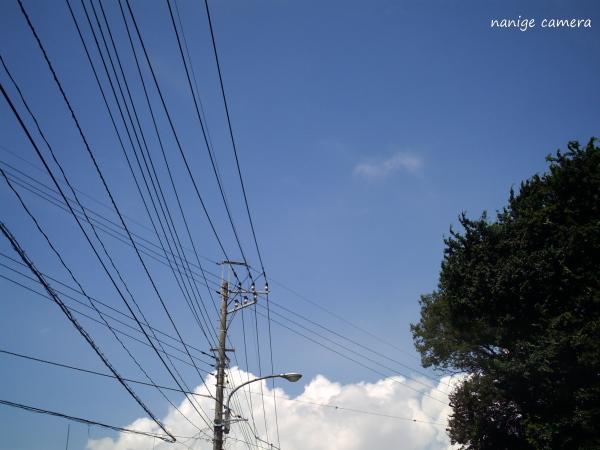 2010-07-17-013b.jpg