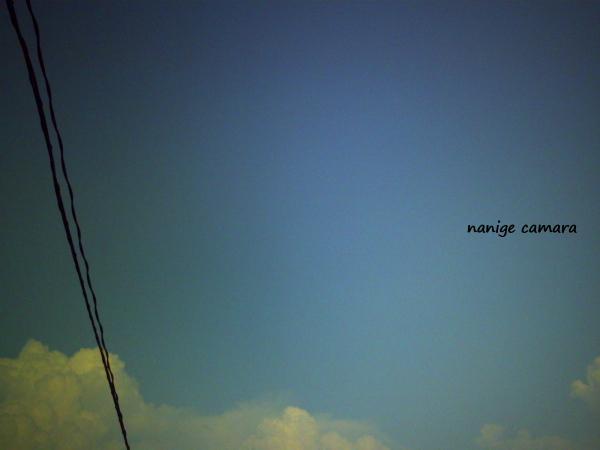 2010-07-25-001b.jpg