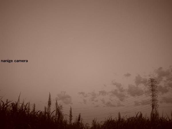 2010-10-10-029b.jpg