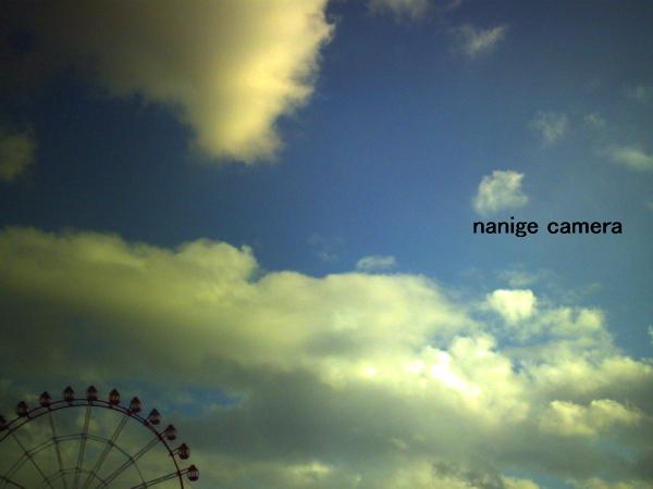 2010-11-20-002.jpg