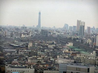 遠くに見える東京スカイツリー