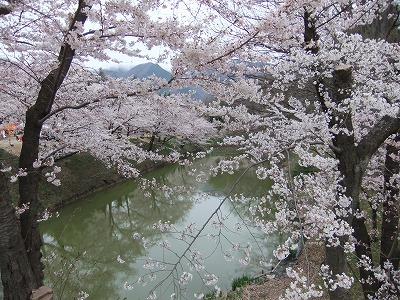 今年の上田城