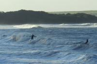 surfsep123