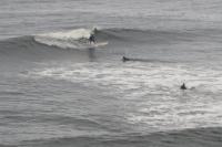 surf221212
