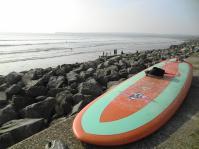 surflahinchwombat