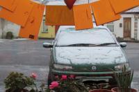 snowdublin0113
