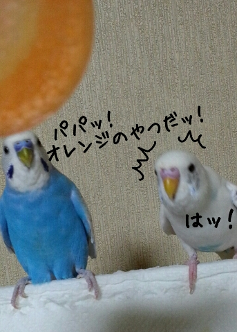 fc2_2014-09-21_00-45-31-240.jpg