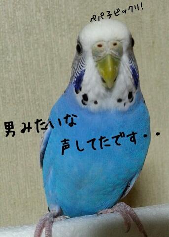 fc2_2014-09-29_14-03-24-884.jpg