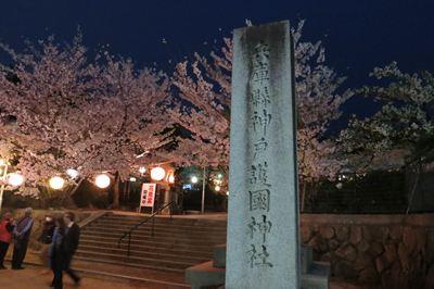 120410夜桜→PUJA001