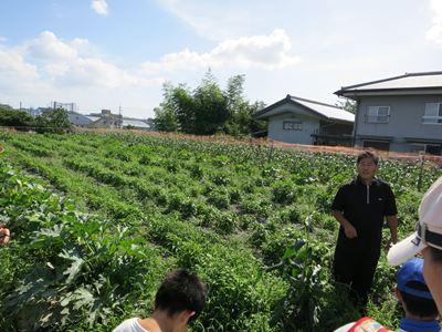 120708やなもり農園収穫祭000