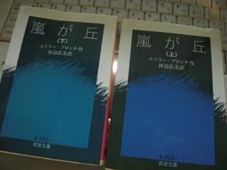 DSCN4688_convert_20120422225155.jpg