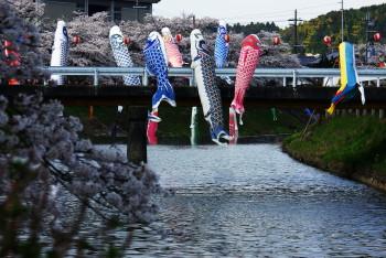 水分神社2011-2