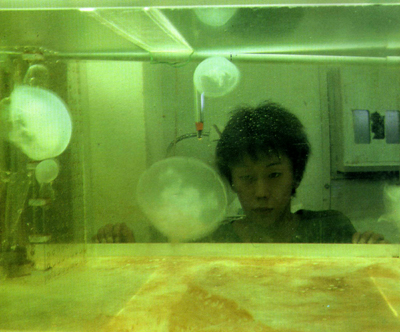 naru_jellyfish01_2.jpg