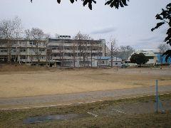 2010_0217AL.jpg