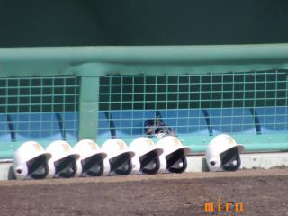成田高校ベンチ前