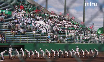 若松高校野球部
