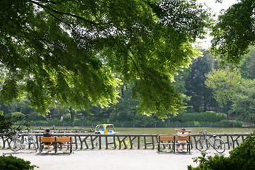 公園でのひととき