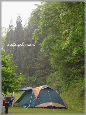 雨の中の新緑キャンプ