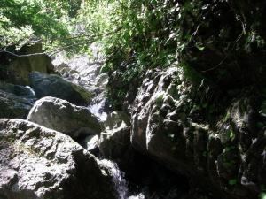 渓流の岩 クリックで拡大