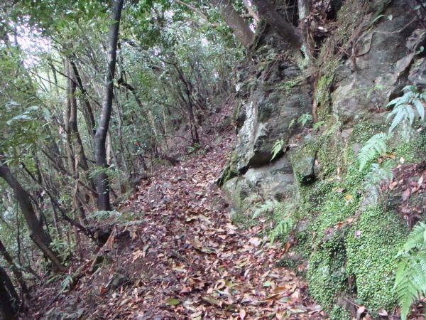 山家城址公園からの散策道、かなりヤバイ