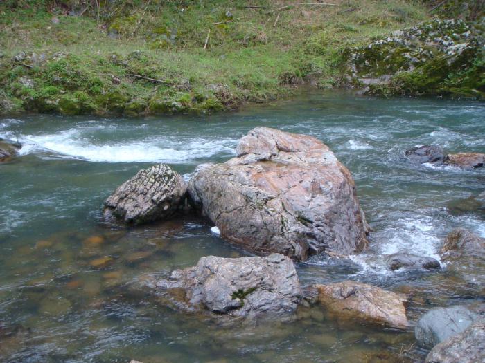 岩をかむ流れも