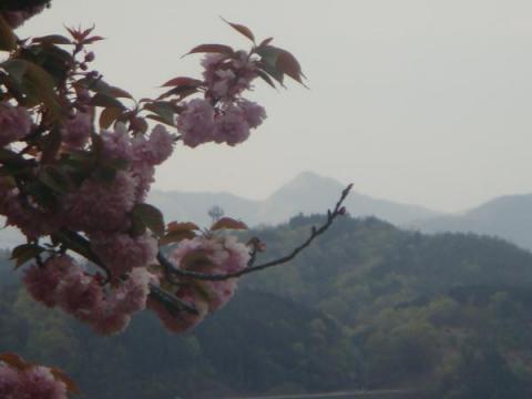 弥仙山を遠望