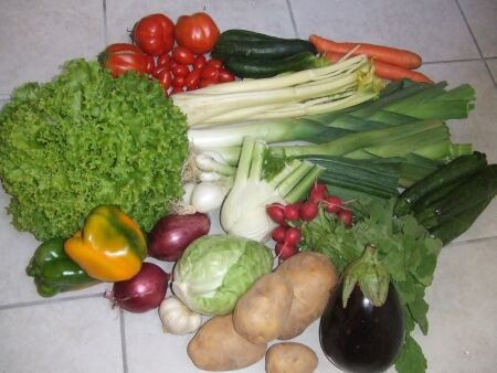 2010_0807野菜01721